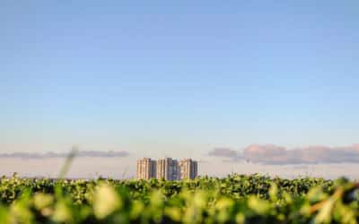 The growing ESG bond market and why sustainability-linked bonds are growing in popularity